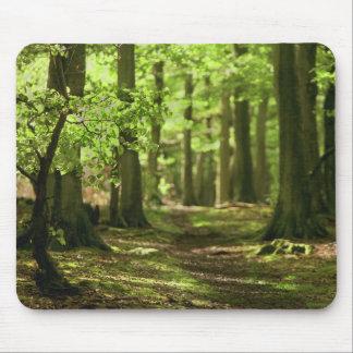 Walk in the Wood Mousepad