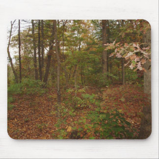 Walk In The Woods Mouse Pad