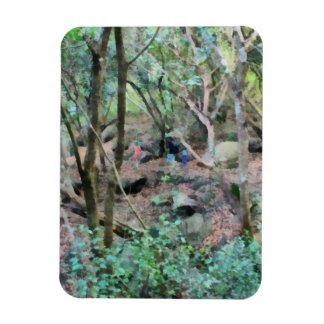 Walk in the woods rectangular photo magnet