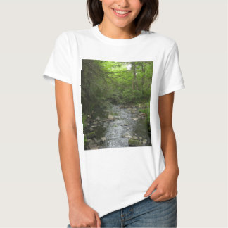 Walk in the Woods Tshirt