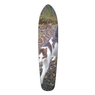 Walking cat custom skate board