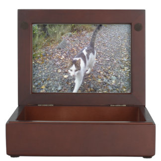 Walking cat keepsake box