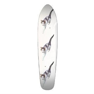 Walking cat skate board