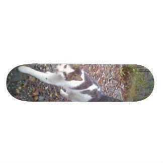 Walking Cat Skate Boards