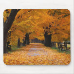 Walking Down Autumn's Memory Lane Mouse Pad