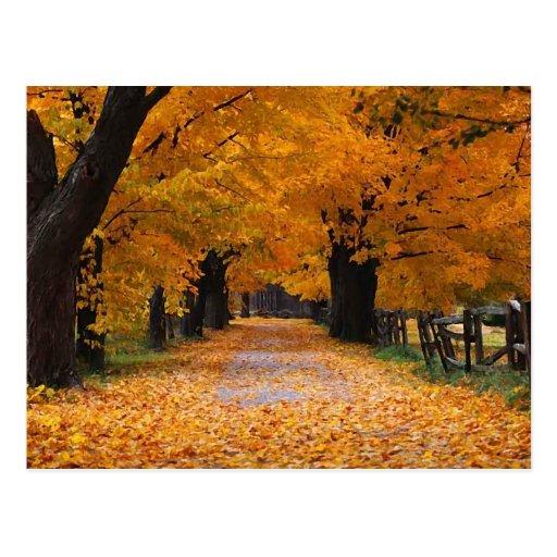 Walking Down Autumn's Memory Lane Post Card