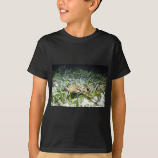 Walking epaulette shark in the Raja Ampat islands T-Shirt