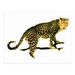 Walking Leopard Postcard