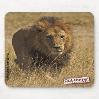 Walking male lion mouse mats