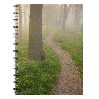 Walking path leading into a forest notebook