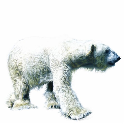 Walking POLAR BEAR (sculpted) Wildlife Magnet Photo Sculpture