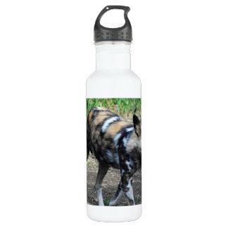 Walking Wild Dog 710 Ml Water Bottle