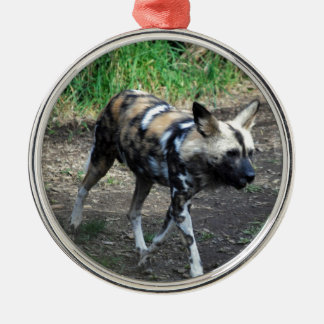 Walking Wild Dog Ornaments