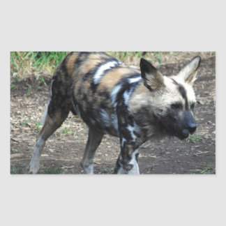Walking Wild Dog Rectangular Sticker