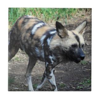Walking Wild Dog Tile