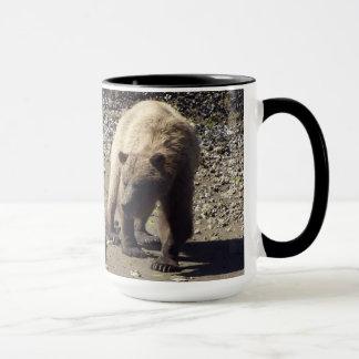 Walking Wild Grizzly Bear Wildlife Photo