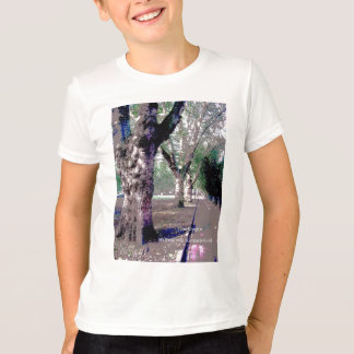 Walking with Abraham-Hicks T-Shirt