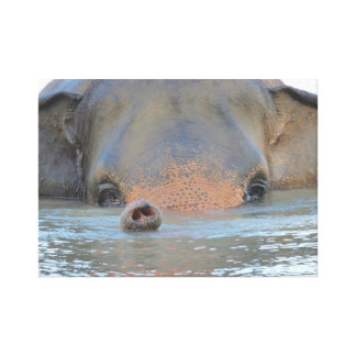 Wall Art: Wildlife, Nature Photography; Elephant Canvas Print
