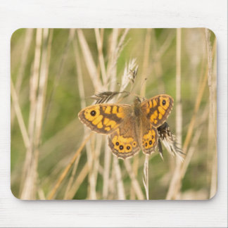 Wall Brown Butterfly Mouse Mat