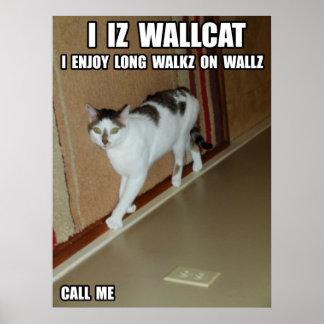 Wall Cat Print