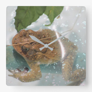 wall clock - frog