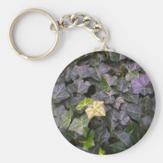Wall of ivy key ring