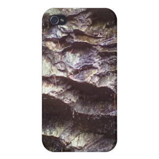 Wall of rock iPhone 4/4S covers