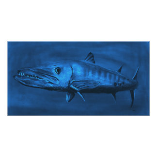WALL SIZED--Huge Sized Blue Barracuda Print