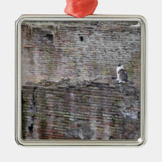 Wall with cats sitting on it Silver-Colored square decoration
