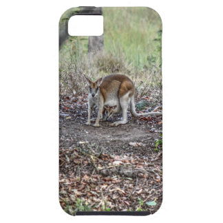 WALLABY AND JOEY QUEENSLAND AUSTRALIA ART EFFECTS iPhone 5 COVER