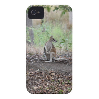 WALLABY AND JOEY RURAL QUEENSLAND AUSTRALIA Case-Mate iPhone 4 CASE