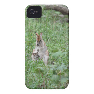 WALLABY AND JOEY RURAL QUEENSLAND AUSTRALIA iPhone 4 CASES
