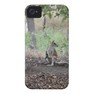 WALLABY AND JOEY RURAL QUEENSLAND AUSTRALIA iPhone 4 COVER
