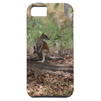 WALLABY AND JOEY RURAL QUEENSLAND AUSTRALIA iPhone 5 CASE