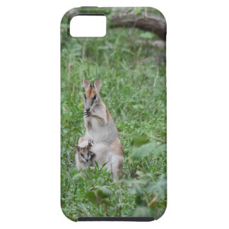 WALLABY AND JOEY RURAL QUEENSLAND AUSTRALIA iPhone 5 CASES