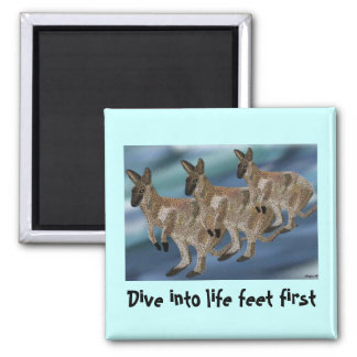 Wallaby Family Habitat Magnet