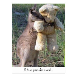 Wallaby hugging teddybear postcard love you