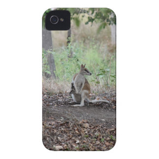 WALLABY & JOEY RURAL QUEENSLAND AUSTRALIA iPhone 4 Case-Mate CASE