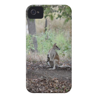 WALLABY & JOEY RURAL QUEENSLAND AUSTRALIA iPhone 4 COVER