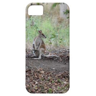 WALLABY & JOEY RURAL QUEENSLAND AUSTRALIA iPhone 5 CASES