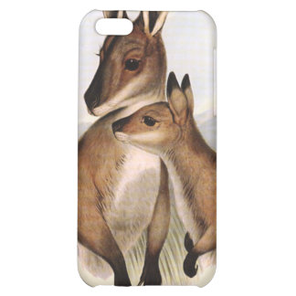 Wallaby Mother and Baby (painting) iPhone 5C Cover
