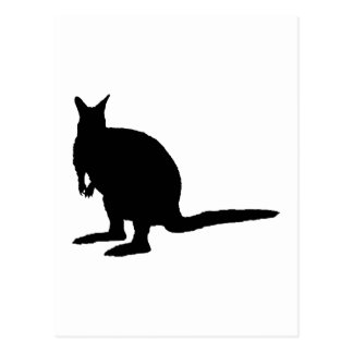 Wallaby. Postcard