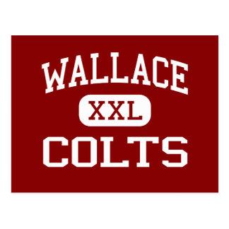 Wallace - Colts - Junior - Parker Arizona Postcard