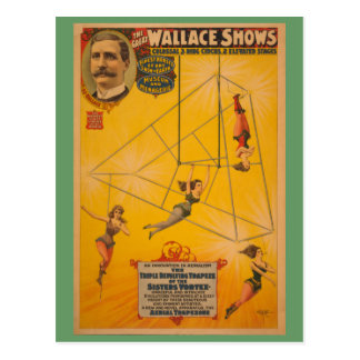 Wallace Shows Triple Revolving Trapeze Poster Postcard