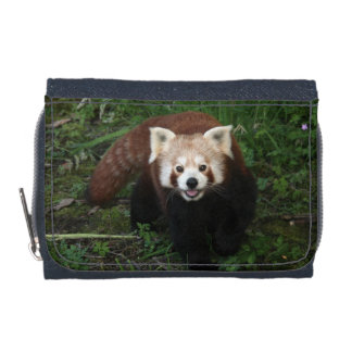 Wallet - red panda