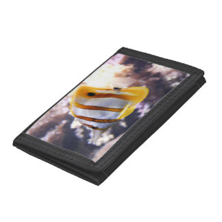wallet with image of tang fish