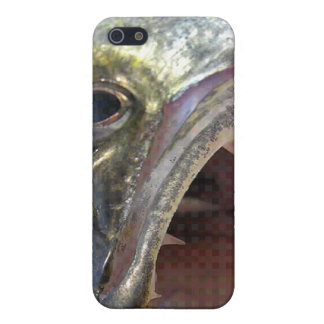 WALLEYE iPhone 5/5S CASES