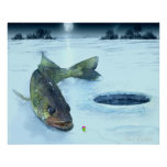 Walleye on Ice Poster