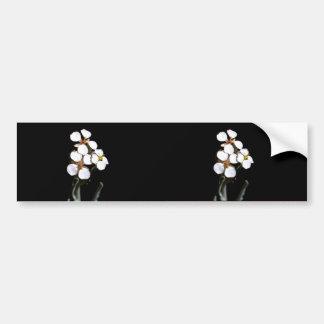 Wallflower Bumper Sticker