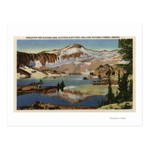 Wallowa National Forest, OR Post Card